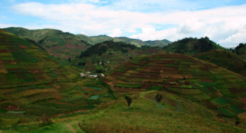 What is the Vital Data Infrastructure for Agriculture?